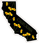 State of California Magnets